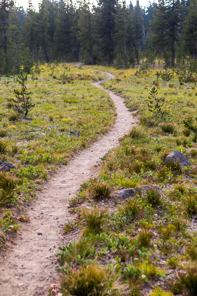 PCT Trail Near Sisters Mirror Lakes