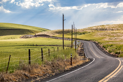 Road thru the Palouse