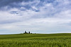 Palouse Wheat Farm