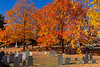 Laurel Hill Cemetery Reading 10-20-13-015ps