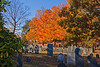 Laurel Hill Cemetery Reading 10-20-13-074ps