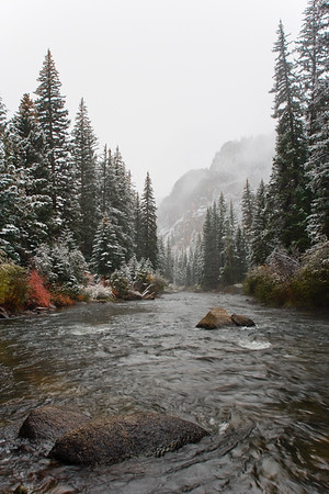 Snow and fog enshroud the Taylor River canyon near Gunnison, Colorado.