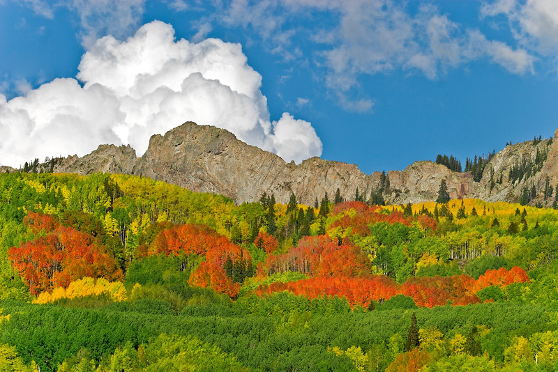 Billowing clouds and blazing Aspen grace the flanks of 'The Dyke' off Kebler Pass Road, near Crested Butte, Colorado.