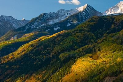 Morning light dances across changing Aspen and Scrub Oak at McClure Pass between Carbondale and Paonia.