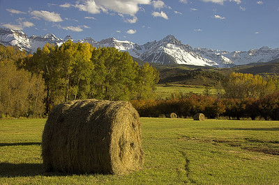 Freshly rolled hay bales create a bucolic ranch scene near Ridgway, Colorado.