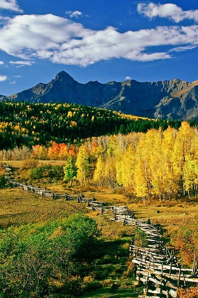 Blazing Fall colors grace an Aspen Bole fence near Dallas Divide, outside Ridgway, Colorado.