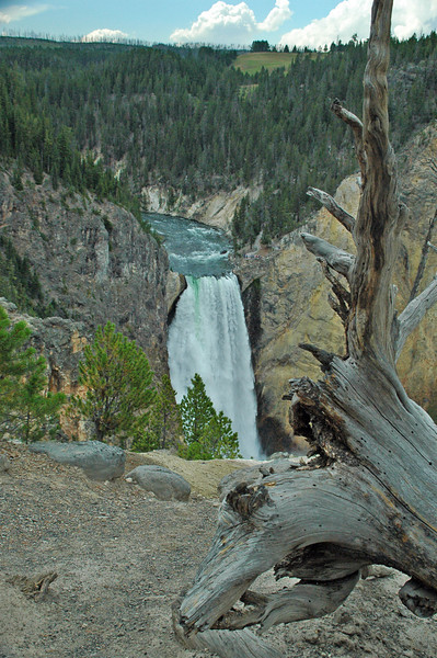 Yellowstone Falls, Yellowstone National Park, MT