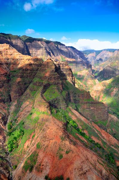 View from top of Waimea Canyon, Kauai, Hawaii