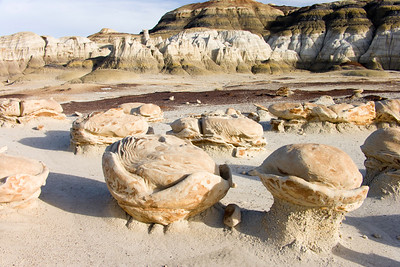 Bisti Badlands Egg Factory, Bisti de Nat Zin near Farmington, New Mexico.