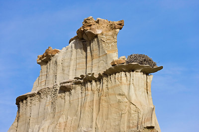 Eagle's Nest, Bisti Badlands,  Bisti de Nat Zin near Farmington, New Mexico.