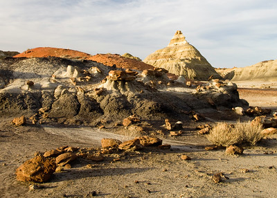 Petrified wood and rock formations,  Bisti de Nat Zin near Farmington, New Mexico.