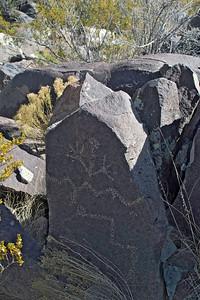 Three Rivers Petroglyph Site, between Tularosa and Carrizozo, New Mexico.