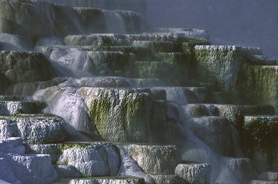 Travertine terraces at Mammoth Hot Springs in Yellowstone National Park