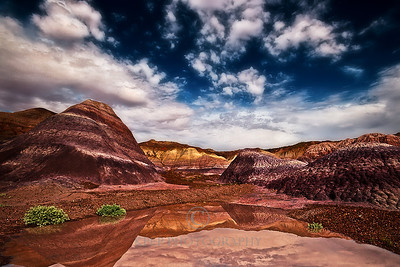 badland reflections