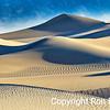 Morning Dune 1
