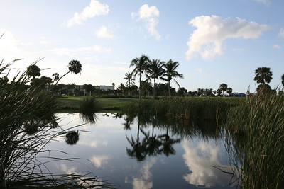 A golf course in Florida