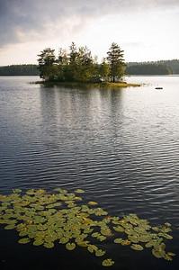 CAV22988 - Lago svedese con isolotto