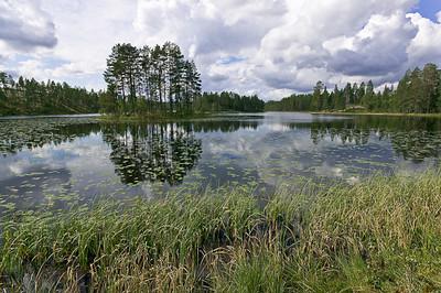 CAV30212 - Lago svedese