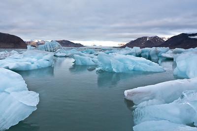 Kungsfjorden, Svalbard