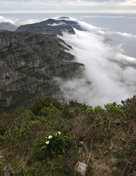 This is the view south from Table Mountain - Cape Town, South Africa