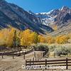 Fall Ranch