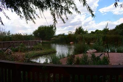 Wetland Park, NV