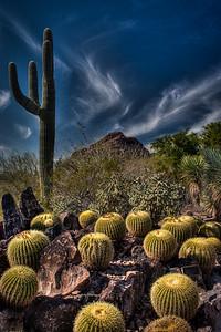 Standing tall, AZ