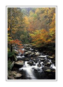 landscapes_FallStream