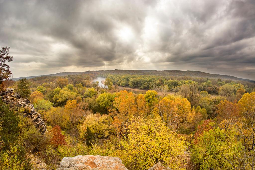 Castlewood Fog and Leaves