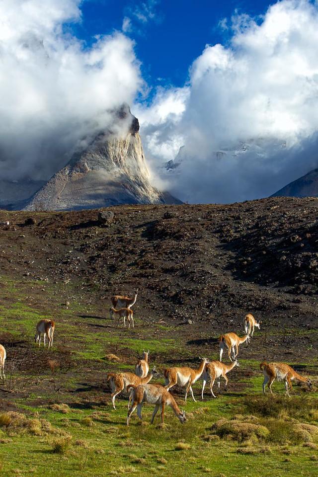 Torres Del Paine_1D-8786-Edit