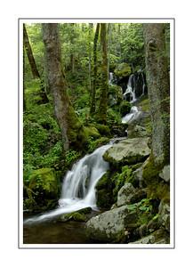 landscapes_DSC0865