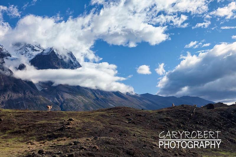 Torres Del Paine_5D-7907-Edit