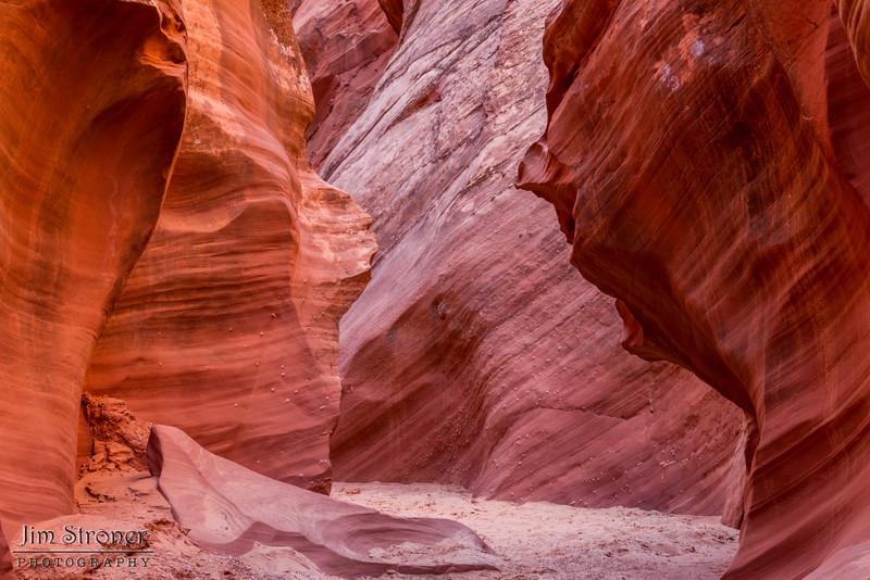 Owl Canyon near Page Arizona\