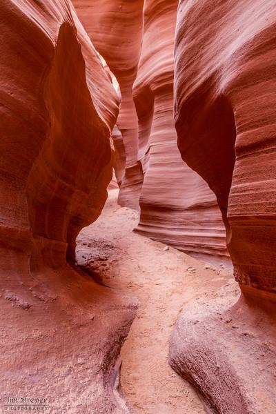 Rattlesnake Canyon near Page Arizona