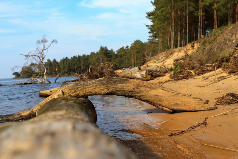 Baltic_Sea_Riga_Gulf_River_Gauja_MG_9792-010