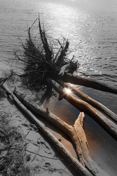 Baltic_Sea_Riga_Gulf_River_Gauja_MG_9785-005