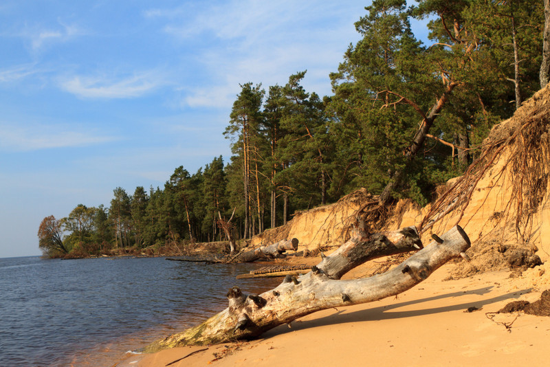 Baltic_Sea_Riga_Gulf_River_Gauja_MG_9841-020