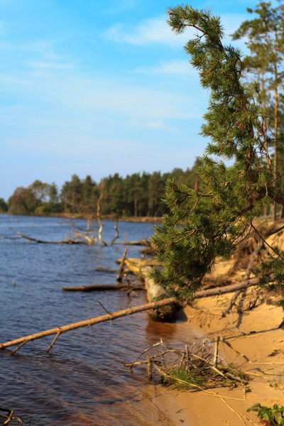 Baltic_Sea_Riga_Gulf_River_Gauja_MG_9787-007
