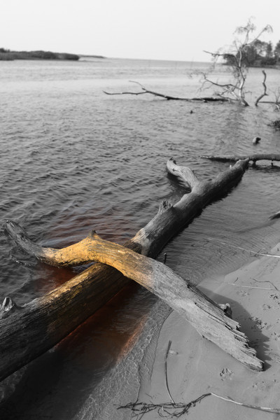 Baltic_Sea_Riga_Gulf_River_Gauja_MG_9797-012