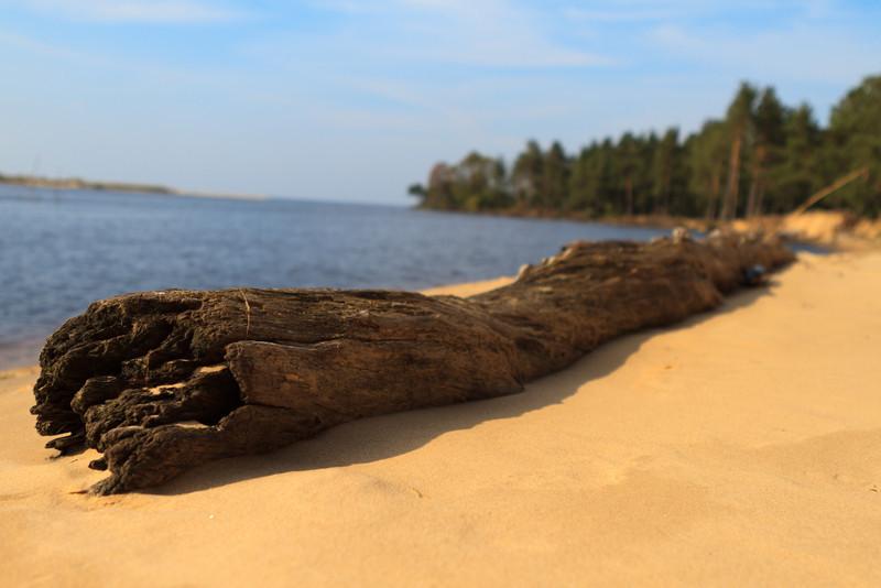 Baltic_Sea_Riga_Gulf_River_Gauja_MG_9812-016
