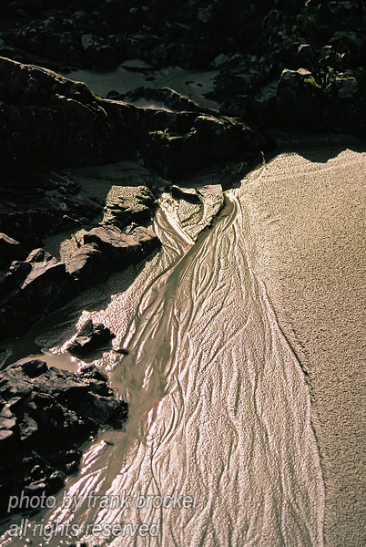 Rivers in the Sand II