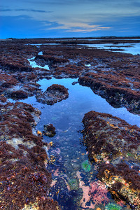 © Joseph Dougherty. All rights reserved.   Tidepools at twilight on the California coast.