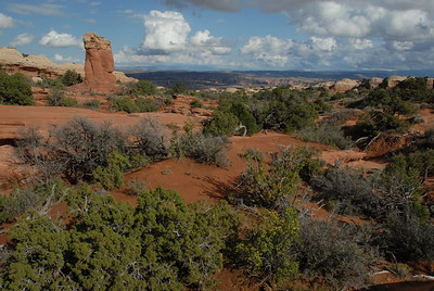© Joseph Dougherty.  All rights reserved.   A wide expanse of juniper and pinyon stretch out across the southwest.