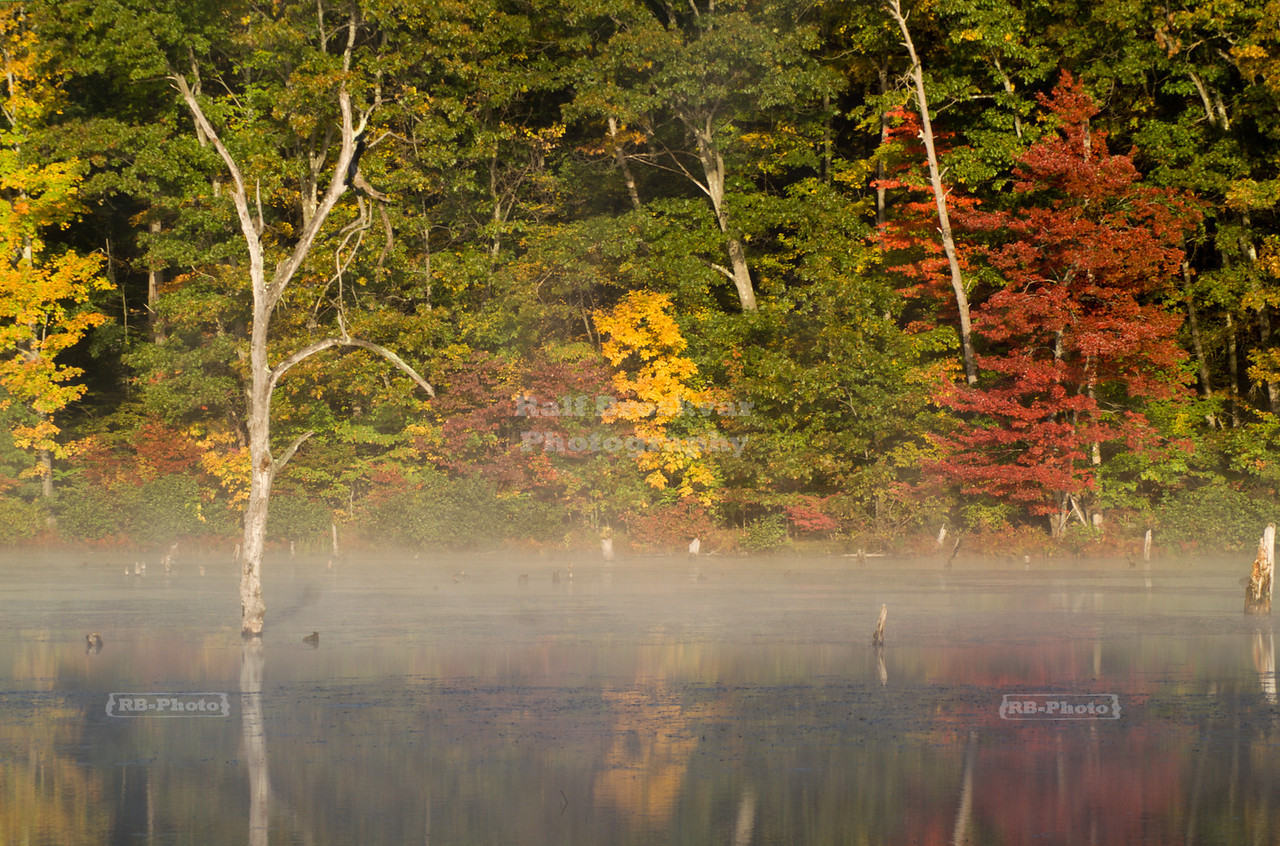 Early morning reflections at Monksville Reservoir, Hewitt, New Jersey, USA
