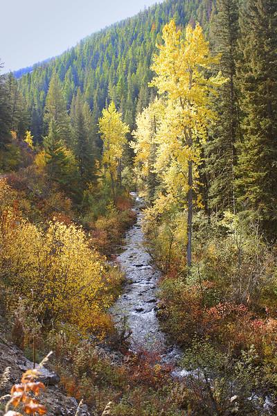 Sourdough Canyon in autumn colors. Bozeman, MT<br /> <br /> © Kirk Sagers