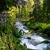 Bridged stream