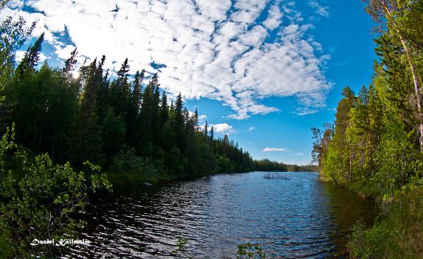 Gråsjön