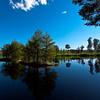 Nice reflective landscape