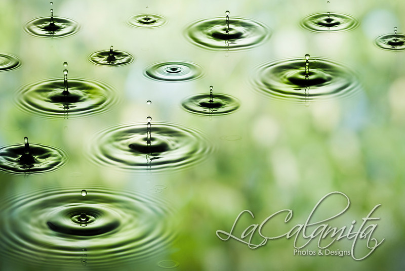 Rain - Falling drops of water. The image was made from four big photos and downsized for better quality.