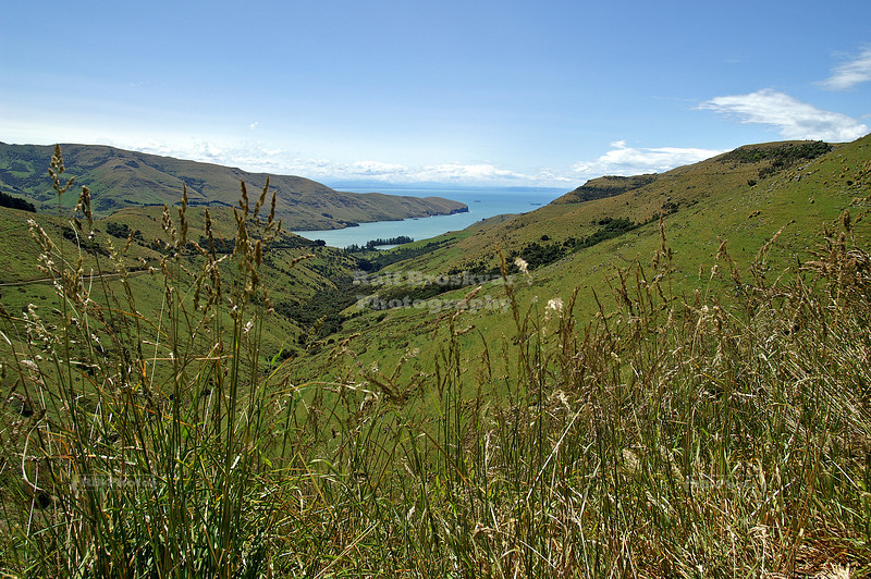 View from Summit Road, Banks Peninsula, South Island, New Zealand